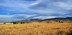 Castilla la mancha landscape, spain Stock Photos