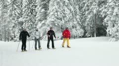 Cross-country skiing - stock footage