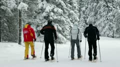 Group of seniors cross-country skiing in snowy forest - stock footage