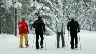 Group of seniors cross-country skiing in snowy forest Stock Footage