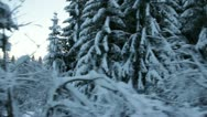 Beautiful winter time surroundings while driving Stock Footage