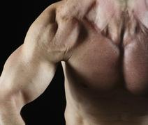 Muscular arm Stock Photos