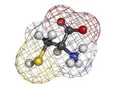 cysteine (cys, c) amino acid, molecular model. - stock illustration
