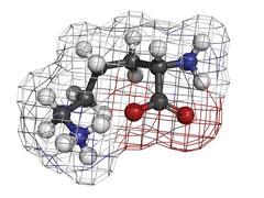 Lysine (lys, k) amino acid, molecular model. Stock Illustration