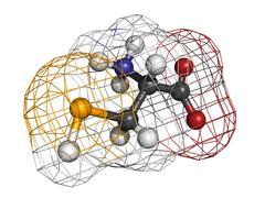 selenocysteine (sec, u) amino acid, molecular model. - stock illustration