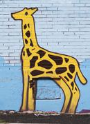 Graffiti drawing of a giraffe  Stock Photos