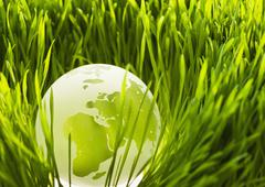USA, New Jersey, Jersey City, Close-up view of illuminated green globe in grass Stock Photos