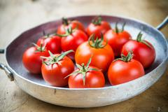 rustic tomatoes in a metal skillet - stock photo