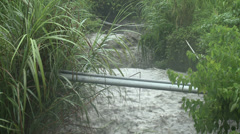 Flooding River After Tropical Storm - stock footage