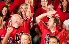 Stock Photo of fans: favorite team is winning