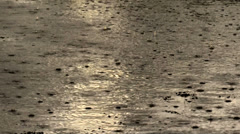 Puddle Splash Rainy Day Stock Footage