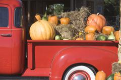 USA, New York, Peconic, pickup truck loaded with pumpkins - stock photo