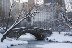 USA, New York City, View of Central Park in winter with Manhattan skyline in Stock Photos