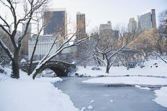 USA, New York City, View of Central Park in winter with Manhattan skyline in - stock photo
