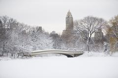 Stock Photo of USA, New York City, Central Park in winter