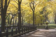 USA, New York City, Autumn scene in Central Park Stock Photos