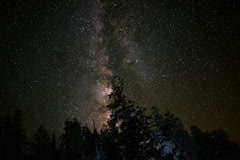 4K Astrophotography Time Lapse Milky Way Galaxy over Alpine Forest Stock Footage