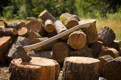 axe with chopped wood - stock photo