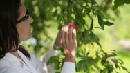 Stock Video Footage of Portrait of young happy scientist by the apple tree HD