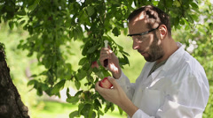 Male scientist inject substance in apple fruit HD Stock Footage