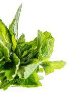 bundle of fresh mint isolated on white - stock photo