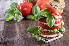 layered slices of tomato and mozzarella - stock photo
