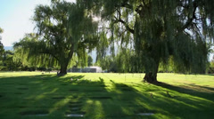 Cemetery glide cam morning Stock Footage