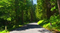 Driving through alpine forest. Stock Footage