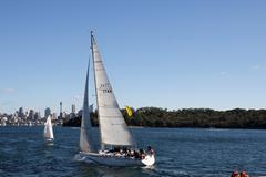 Sydney Harbor Kuvituskuvat