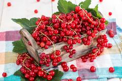 Stock Photo of fresh red currants in a box