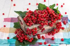 fresh red currants in a box - stock photo