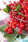 fresh red currants - stock photo