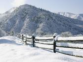 Stock Photo of USA, Colorado, snowy ranch with pen