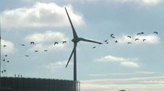 Wind turbine Greenpark Reading from Kirtons Farm RD 03 Stock Footage