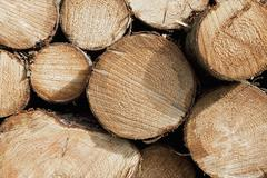 Stock Photo of France, Close up-view of firewood stack