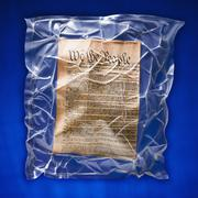 Shrink wrapped declaration of independence - stock photo