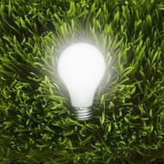 Light bulb in grass - stock illustration