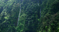 Several waterfalls in Madeira rainforest mountains HD Footage