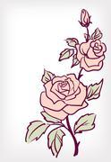 Vaaleanpunainen ruusu, vuosikerta kortti Piirros