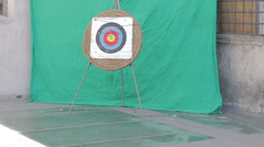 Arrow hits archery target: center, shot, sport, aim  Stock Footage
