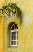 Arched window with palm branch Stock Photos