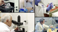 Medical Research HD Footage