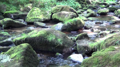 Stock Video Footage of Saussbach gorge