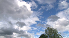 Windy Tree and Cloudy Skies Time Lapse Stock Footage