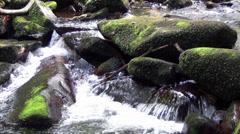 Saussbach gorge - stock footage