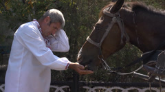 Man feed horse with watermelon Stock Footage