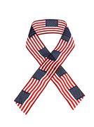 Americana ribbon - stock photo