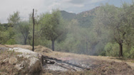 Stock Video Footage of Fire outdoor: countryside, smoke, ash, embers, wood, smog, charred remains