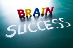 brain for success concept - stock photo
