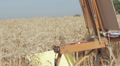 painter in the middle of a wheat field paints a beautiful landscape, PAN HD Footage